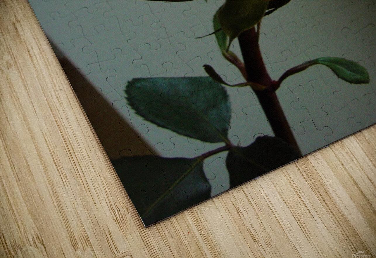 Tea time HD Sublimation Metal print