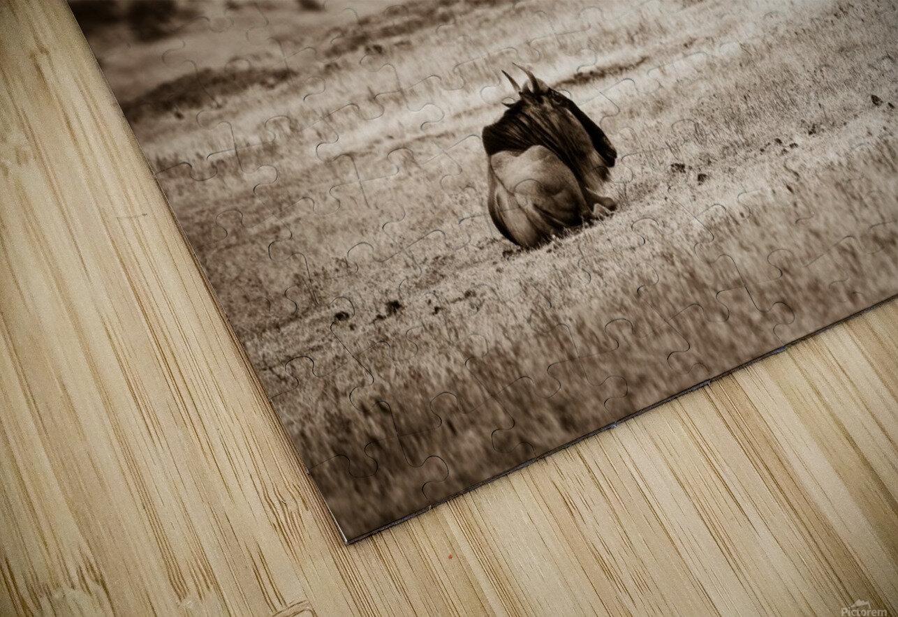 La solitude du gnou HD Sublimation Metal print