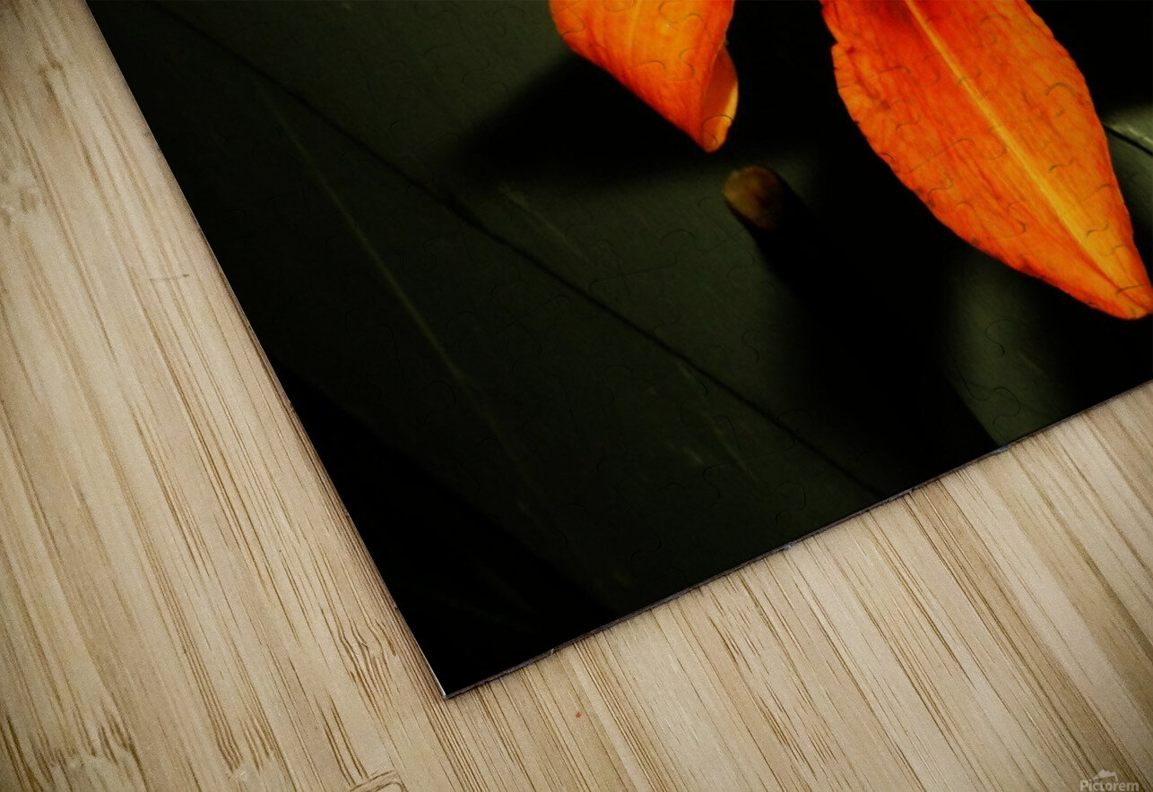 sofn-D014FA2F HD Sublimation Metal print