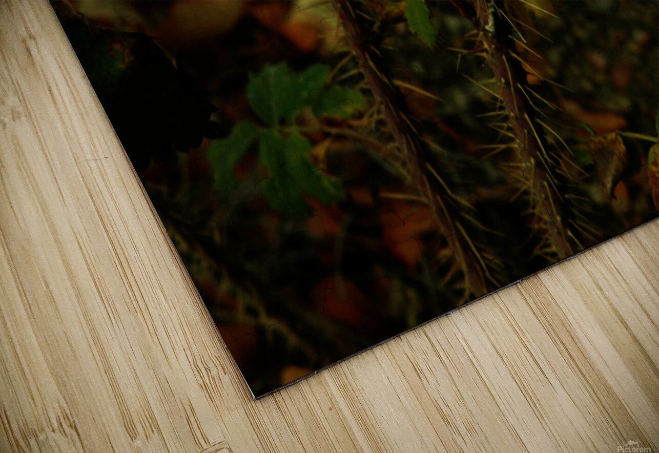 sofn-163F956E HD Sublimation Metal print