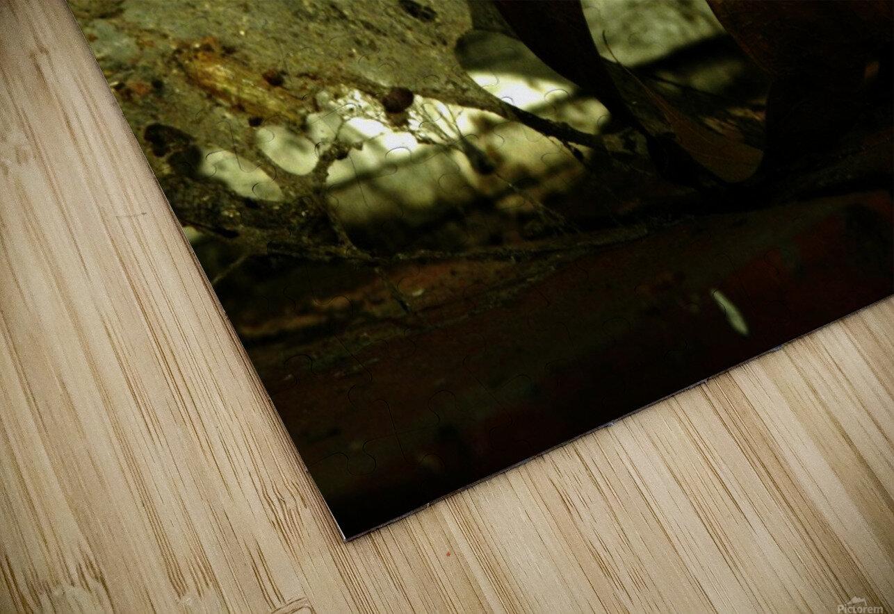sofn-C6486101 HD Sublimation Metal print