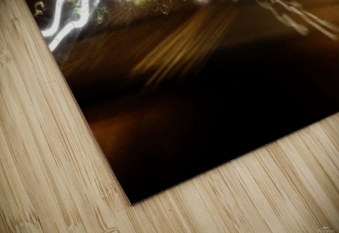 sofn-5DE8815B HD Sublimation Metal print