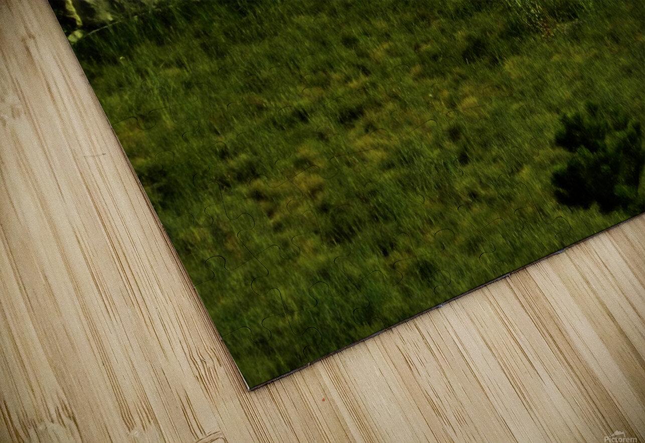 sofn-AB81F9D3 HD Sublimation Metal print