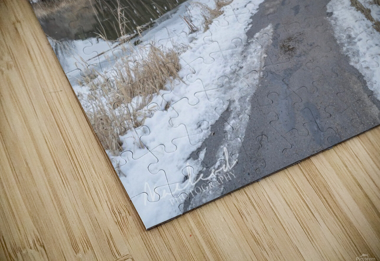 StAlbertTrestle_Nov2018_DSC8625 HD Sublimation Metal print