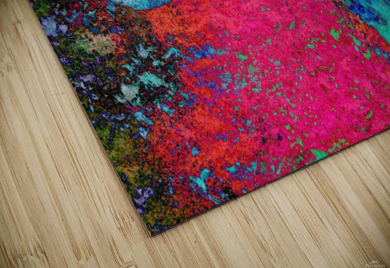 Paw Prints Colour Explosion HD Sublimation Metal print