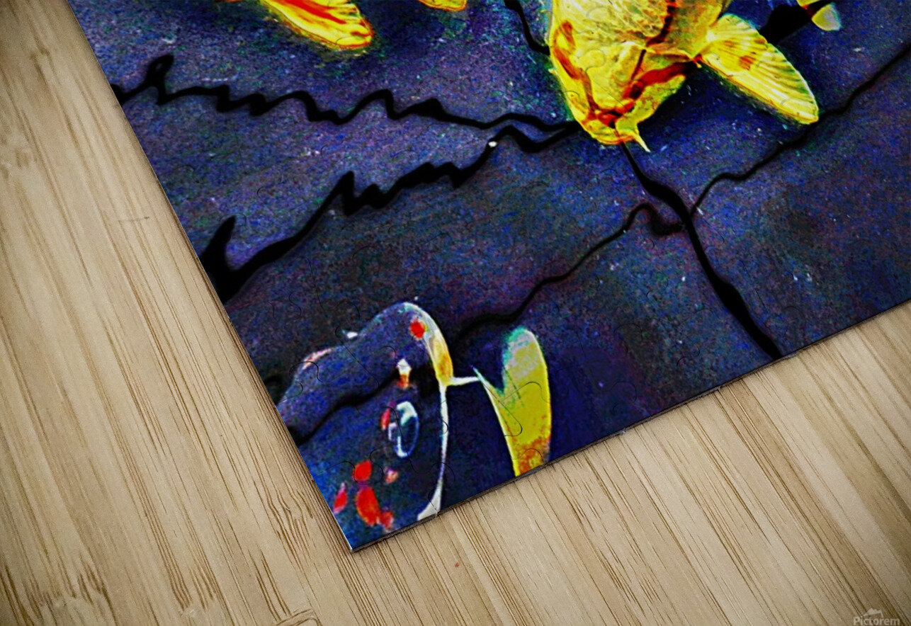 Koi Carp Huddle HD Sublimation Metal print