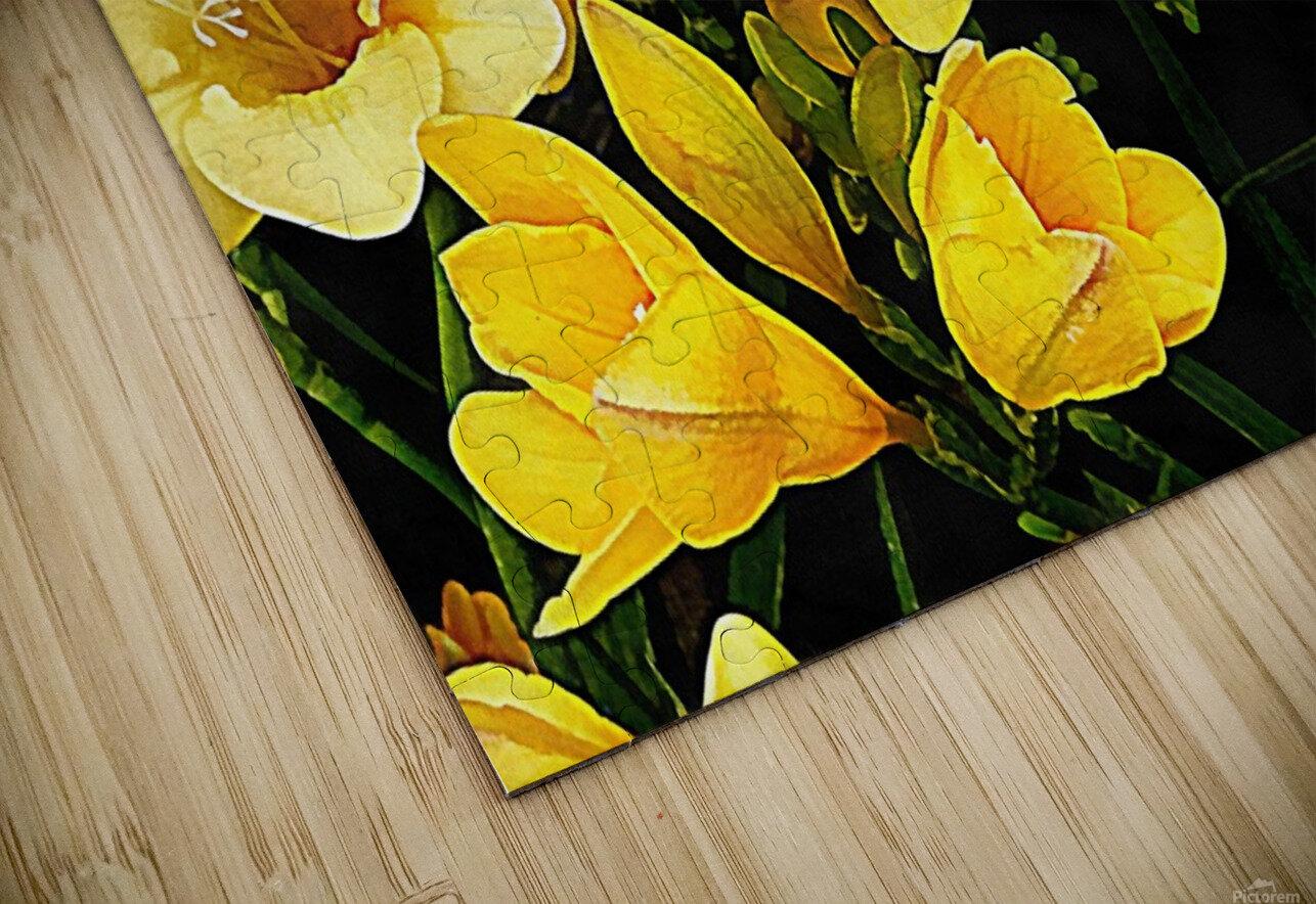 Yellow Freesias HD Sublimation Metal print