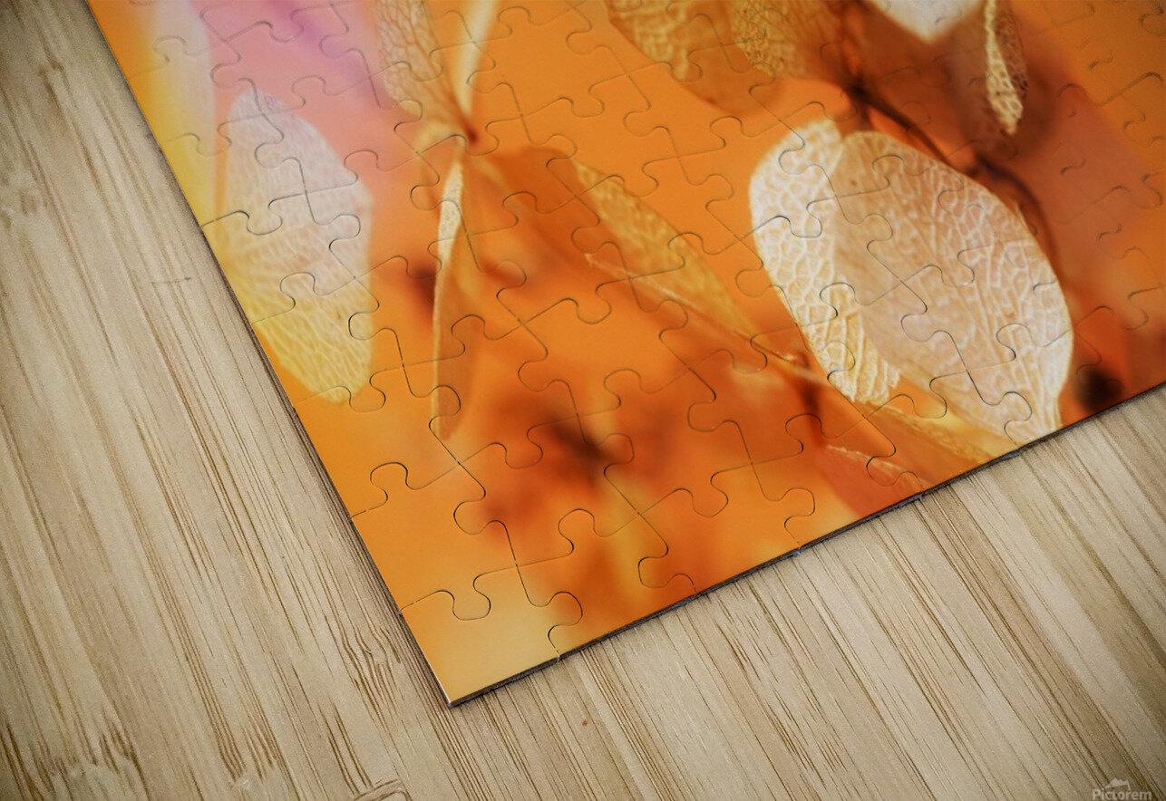 Renaissance HD Sublimation Metal print