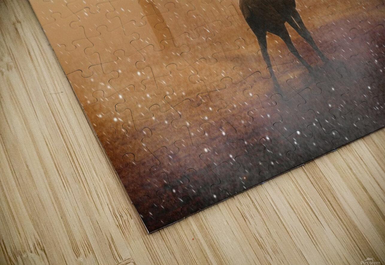 hirsch wild antler nature forest HD Sublimation Metal print