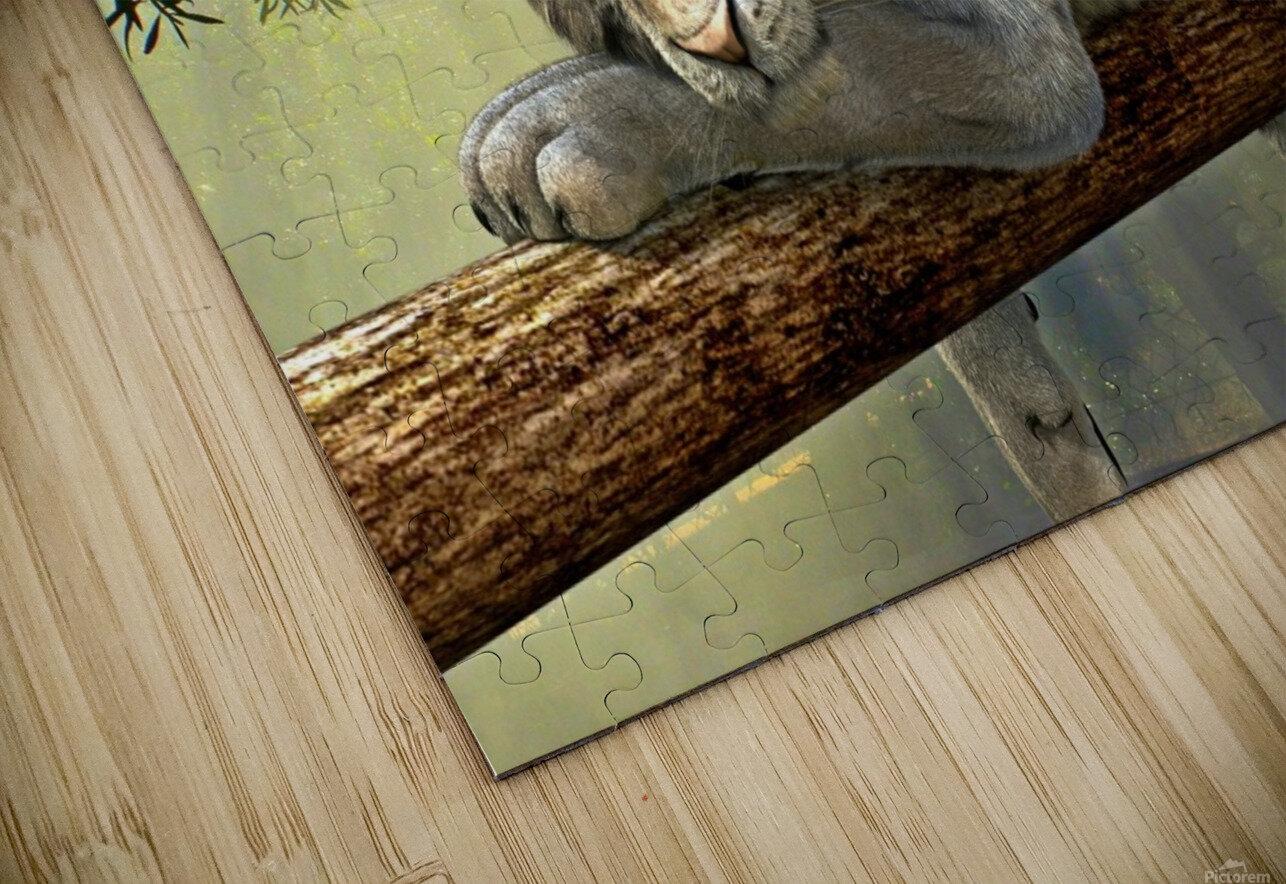 tiger animal jungle rainforest HD Sublimation Metal print