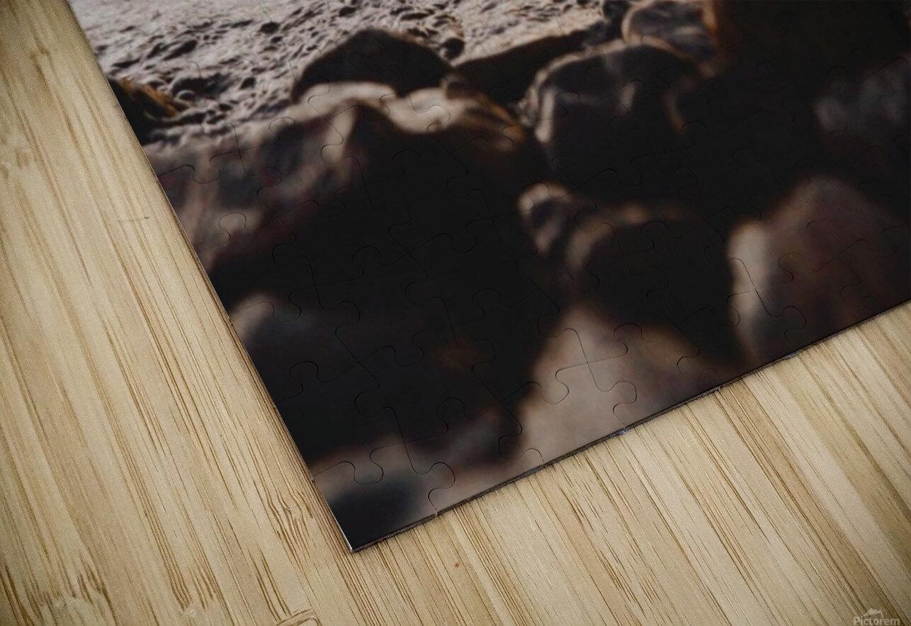 20190728_145100 HD Sublimation Metal print