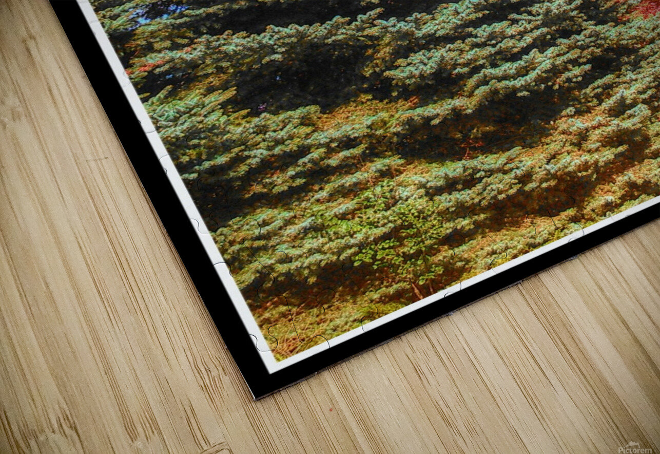 Out-side HD Sublimation Metal print