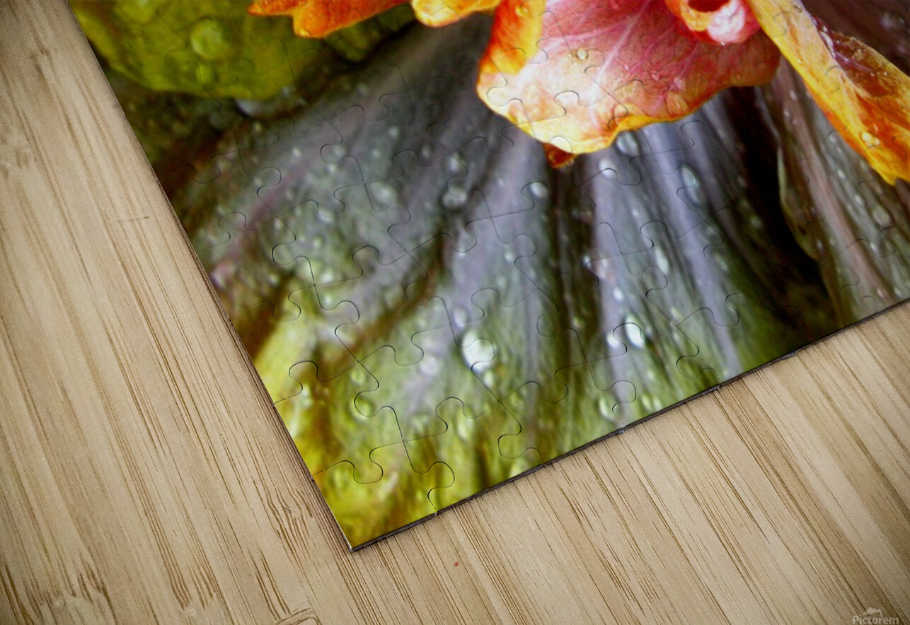 The Multicolored You HD Sublimation Metal print