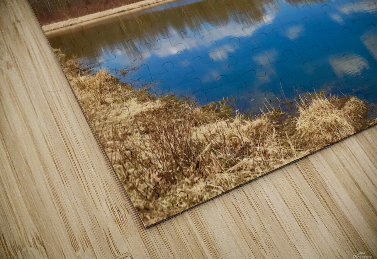 Pond Reflections HD Sublimation Metal print