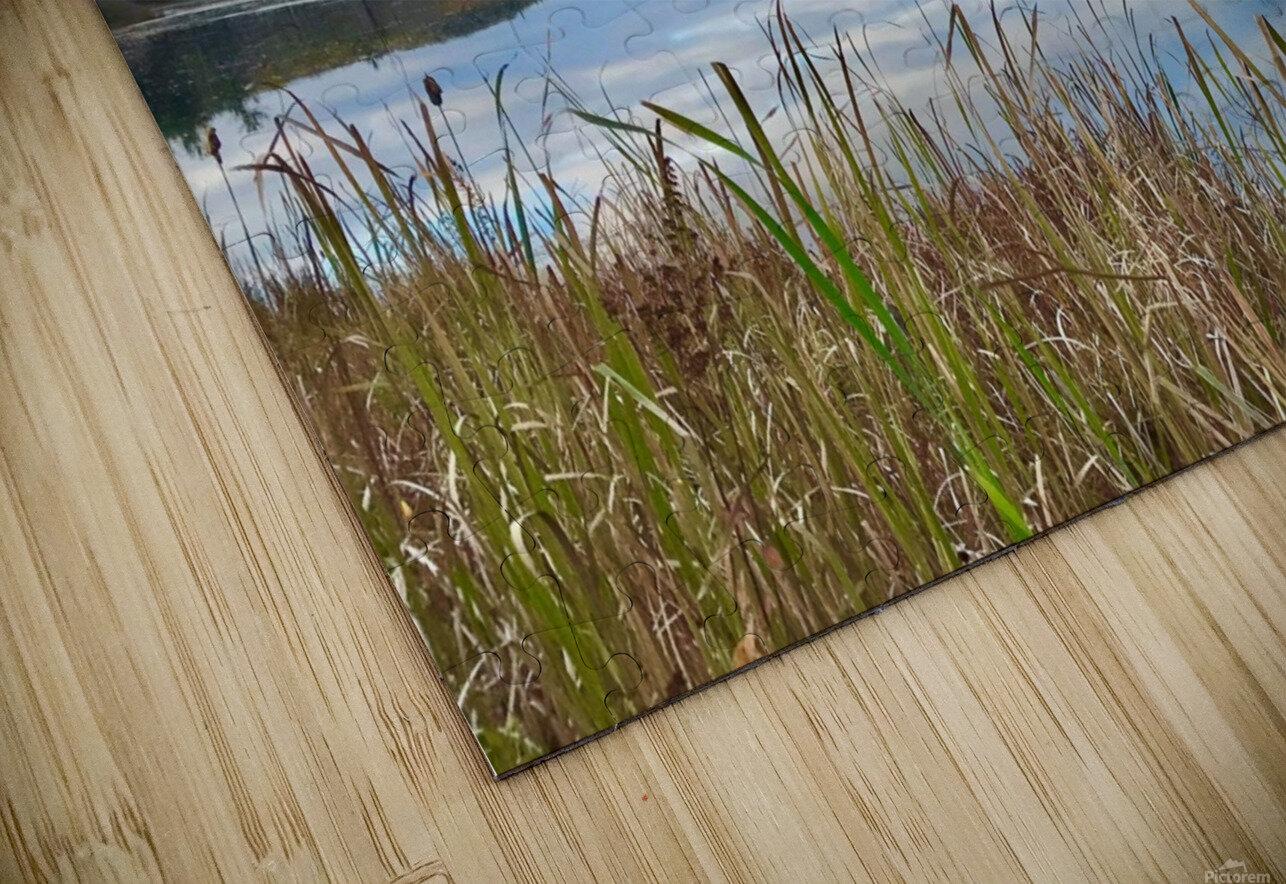 Granville Pond HD Sublimation Metal print