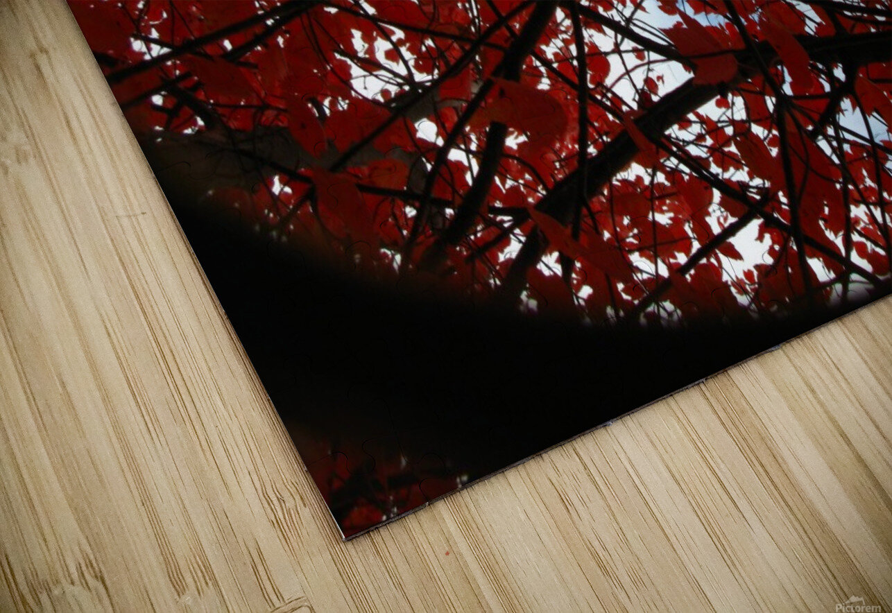 Opening HD Sublimation Metal print