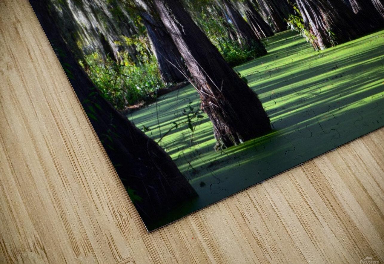 Swampy HD Sublimation Metal print