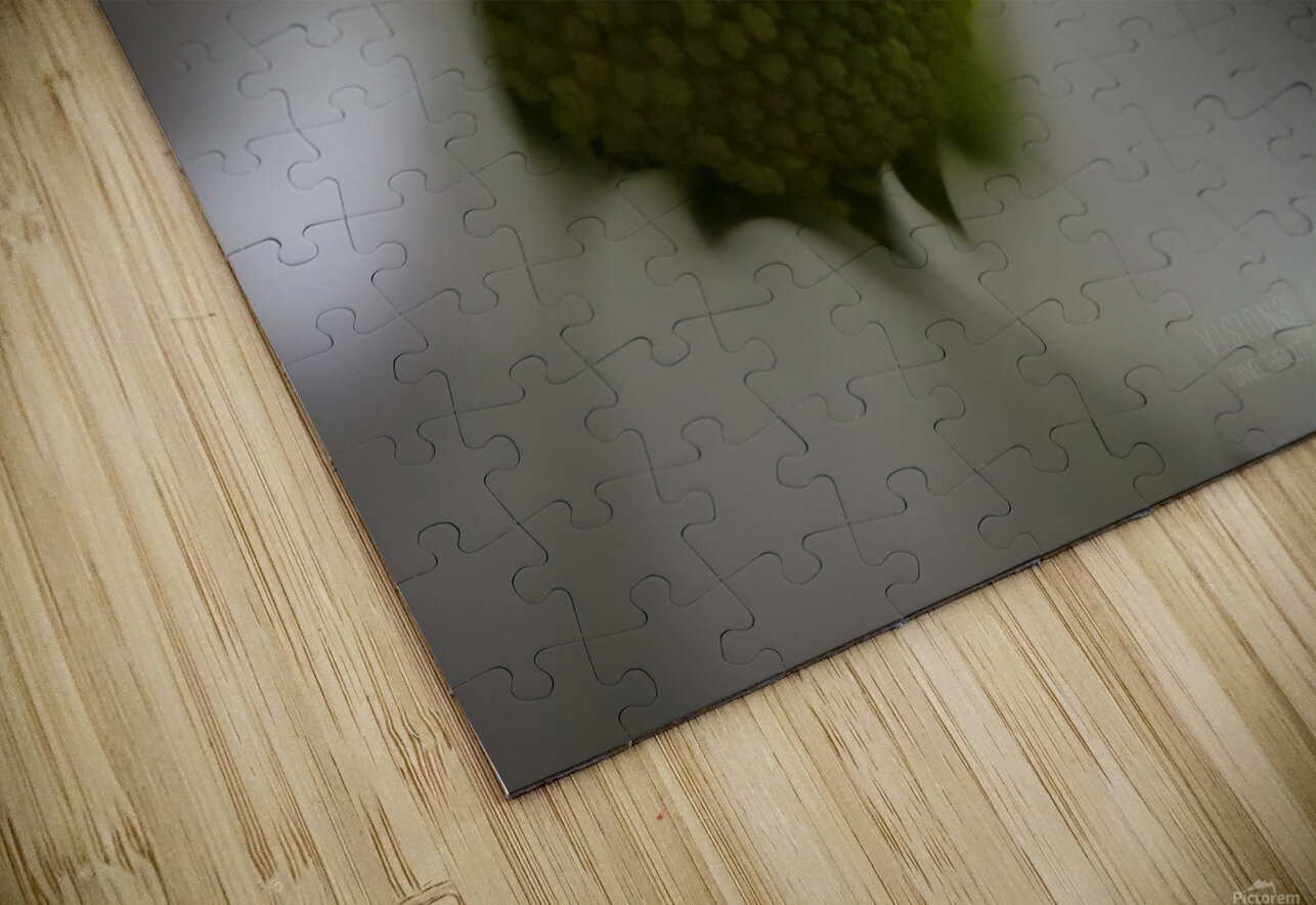 Purete HD Sublimation Metal print