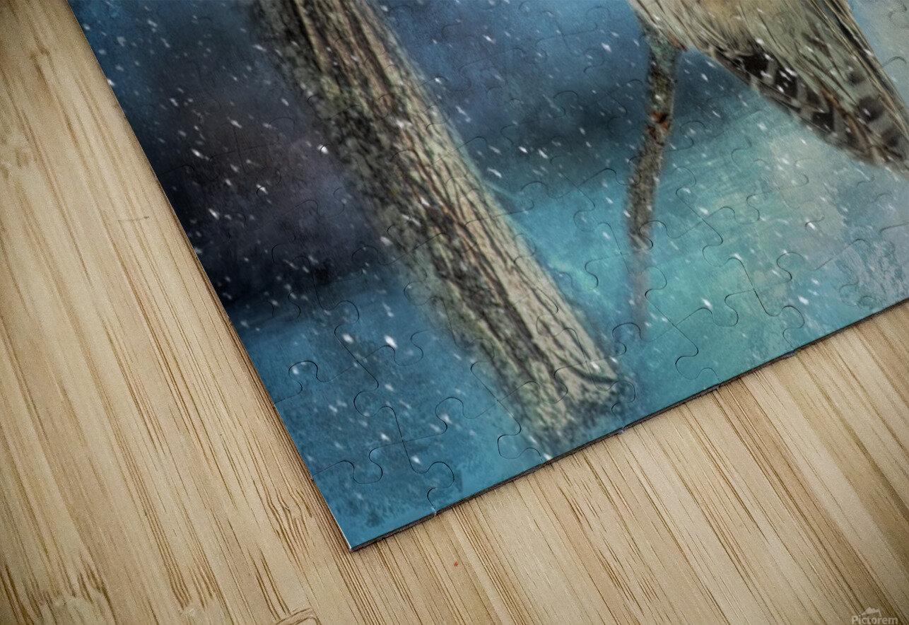Barred Owl Solitude HD Sublimation Metal print