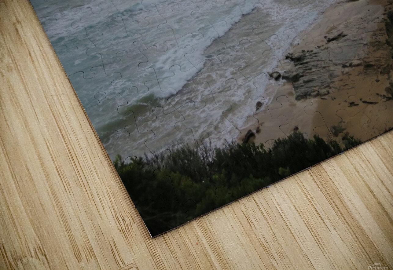 IMG_0243 HD Sublimation Metal print