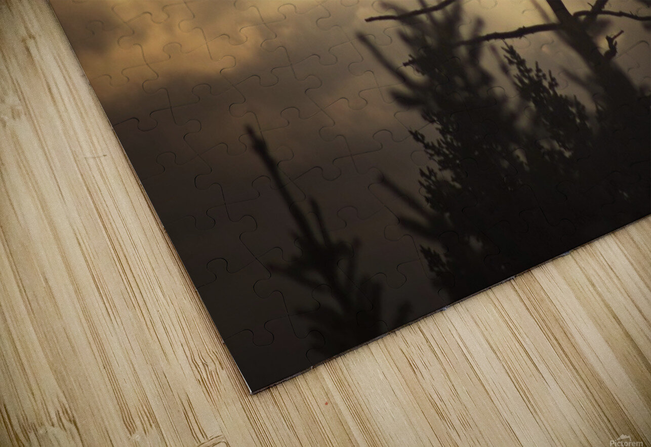 Seeing Double HD Sublimation Metal print