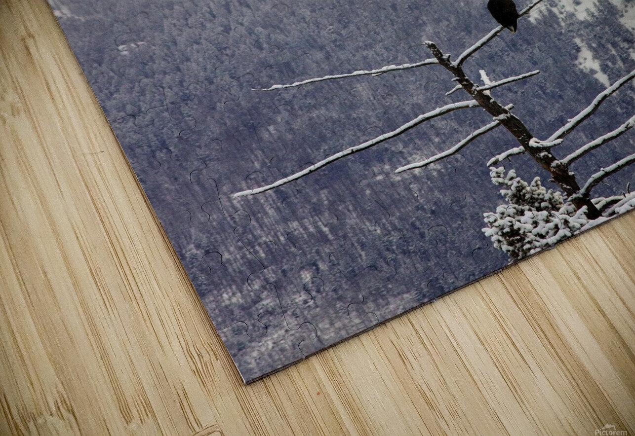 Snowy HD Sublimation Metal print