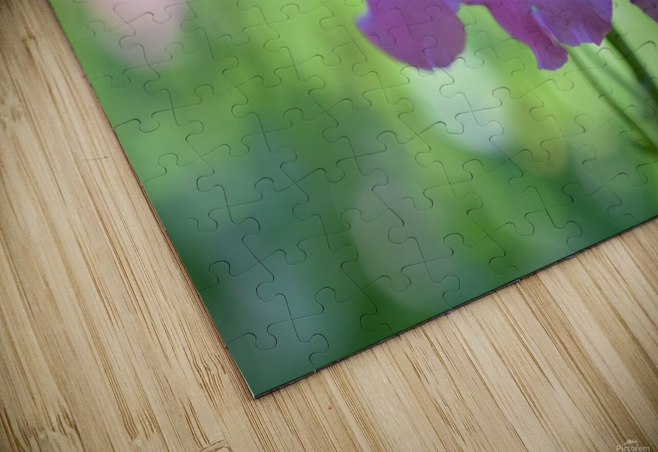 Purple Flowers Photograph HD Sublimation Metal print