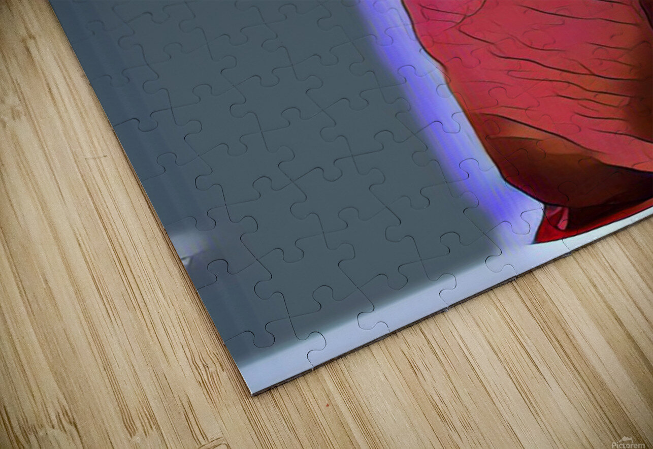 Candy HD Sublimation Metal print