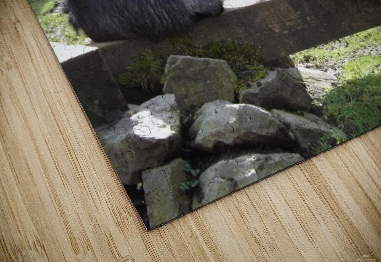 pics 057 HD Sublimation Metal print
