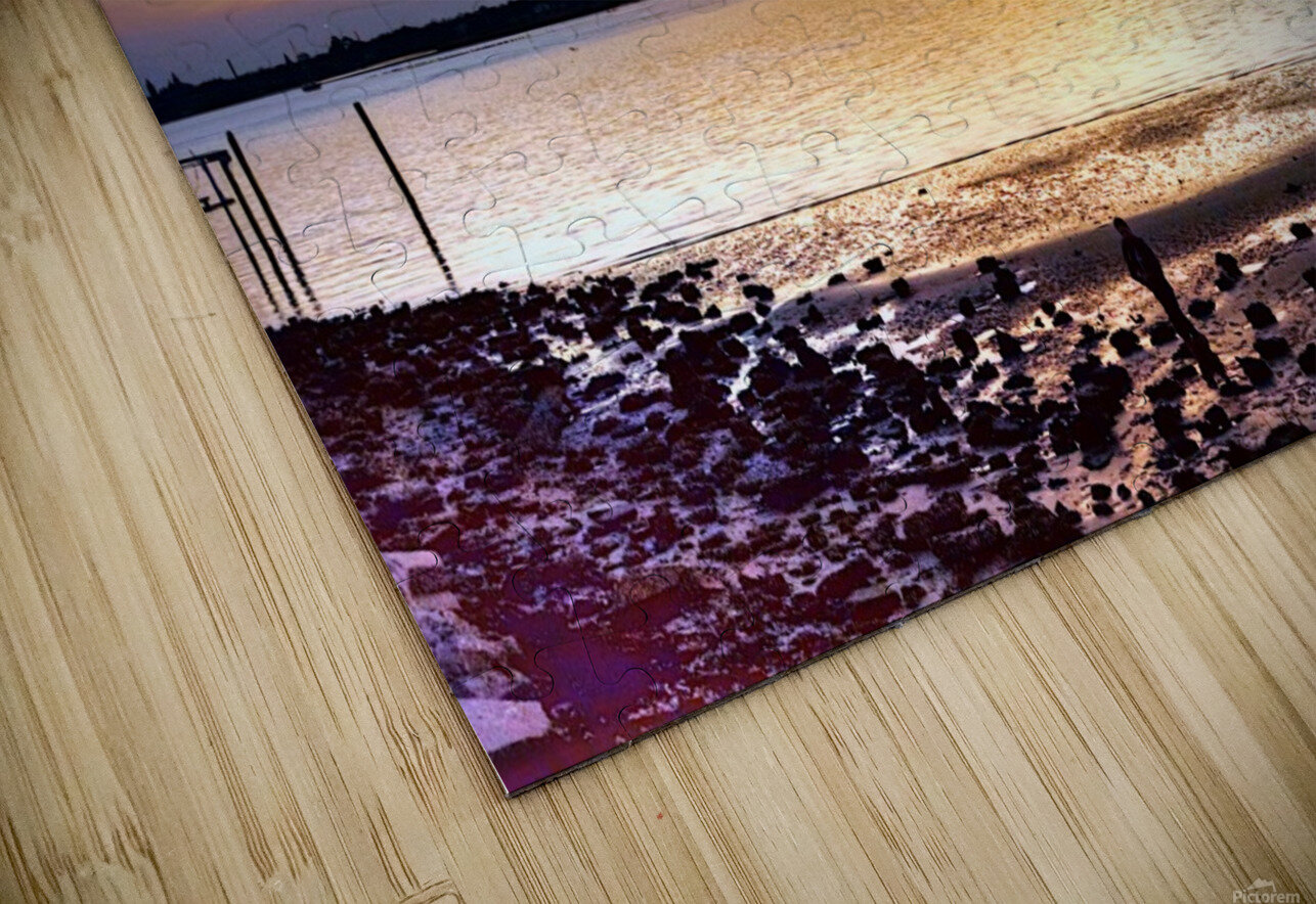 IMG_5547_tonemapped HD Sublimation Metal print