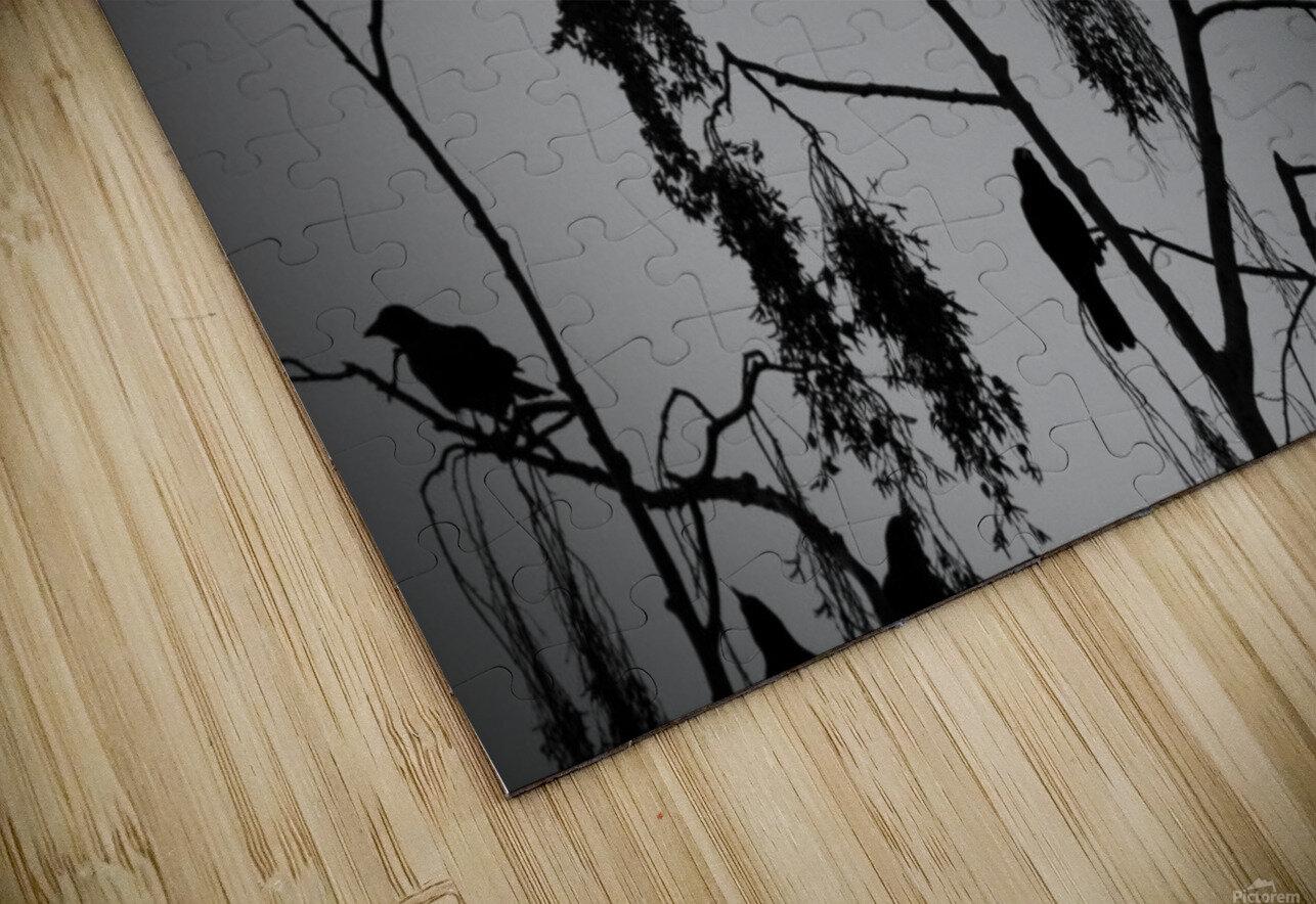 Crows 2016   1 HD Sublimation Metal print