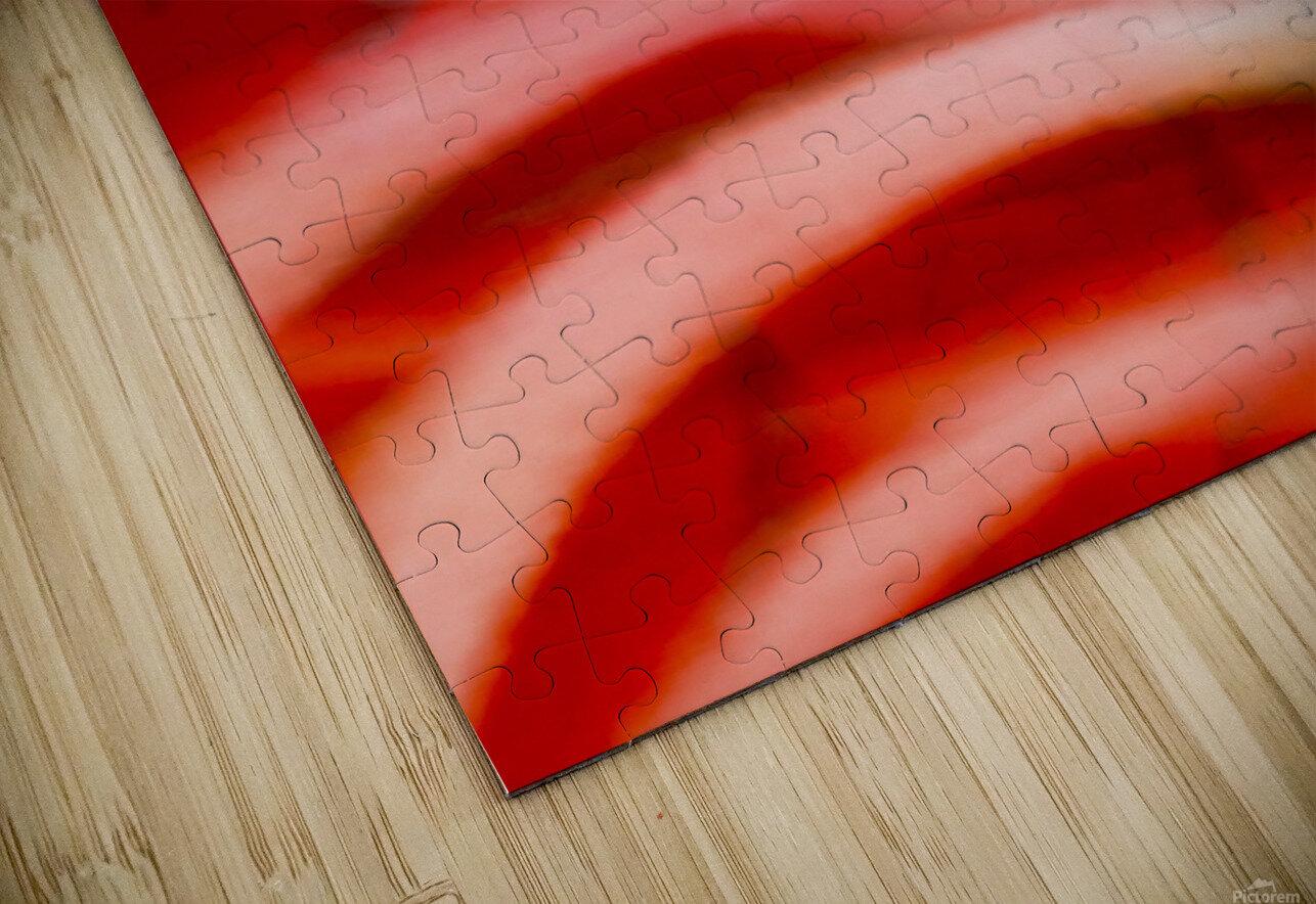 Rhythms of Samba HD Sublimation Metal print