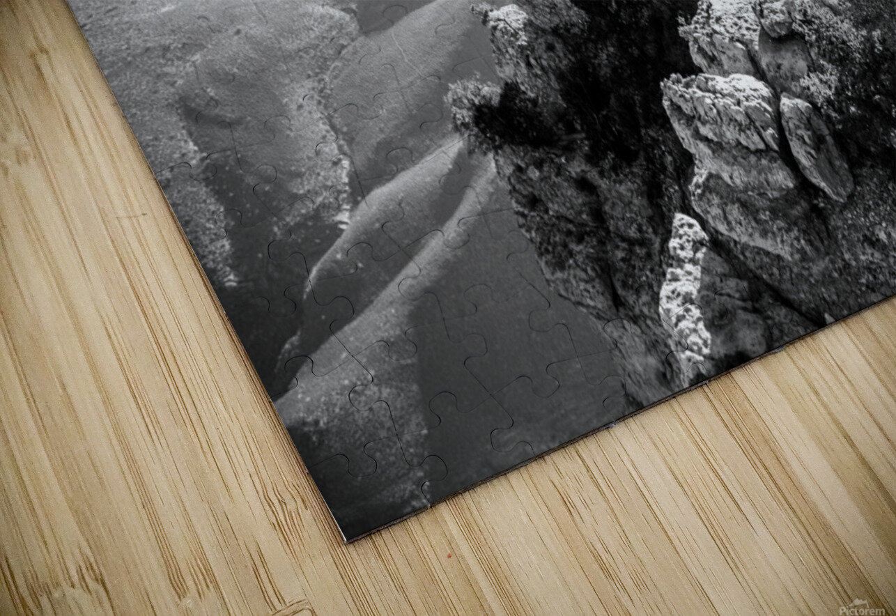 DSC_4863 HD Sublimation Metal print