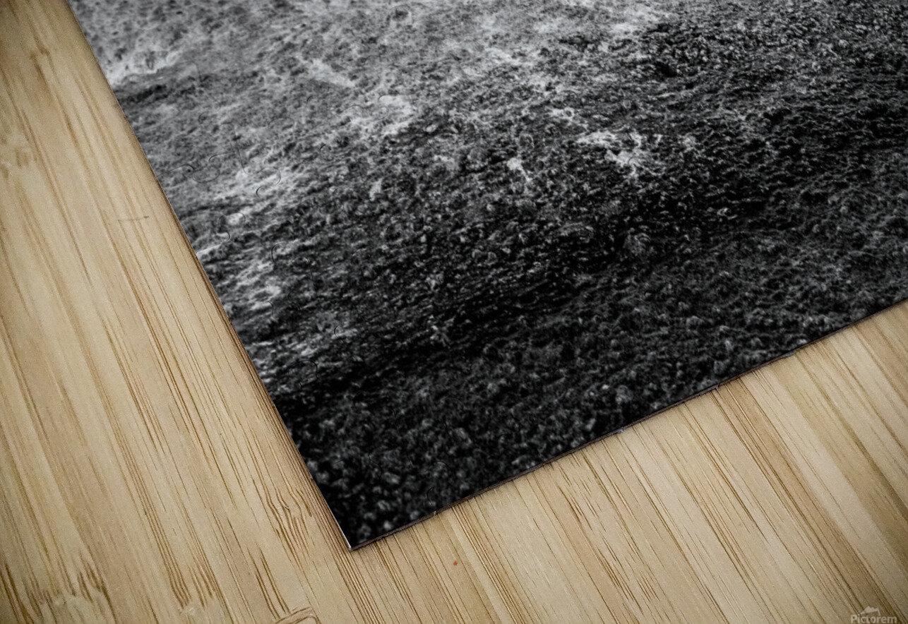 Black Tie Bonanza HD Sublimation Metal print