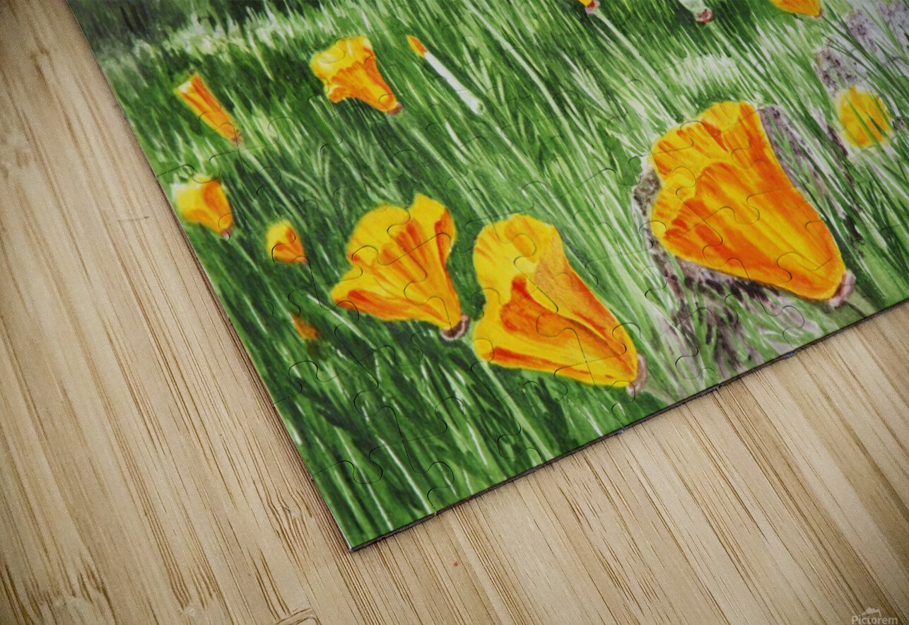 California Poppies HD Sublimation Metal print