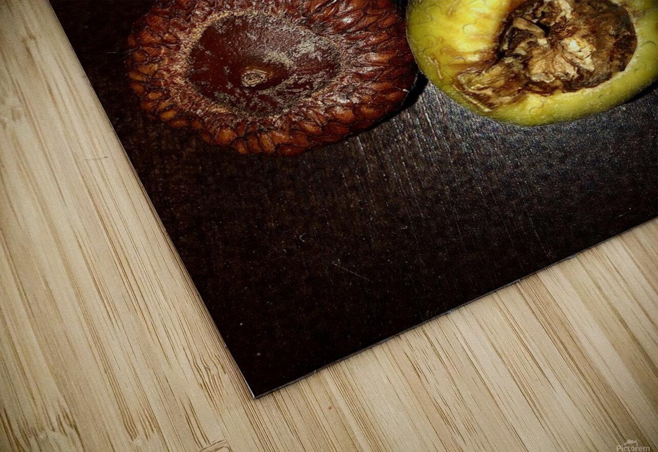 Acorn arrangement HD Sublimation Metal print