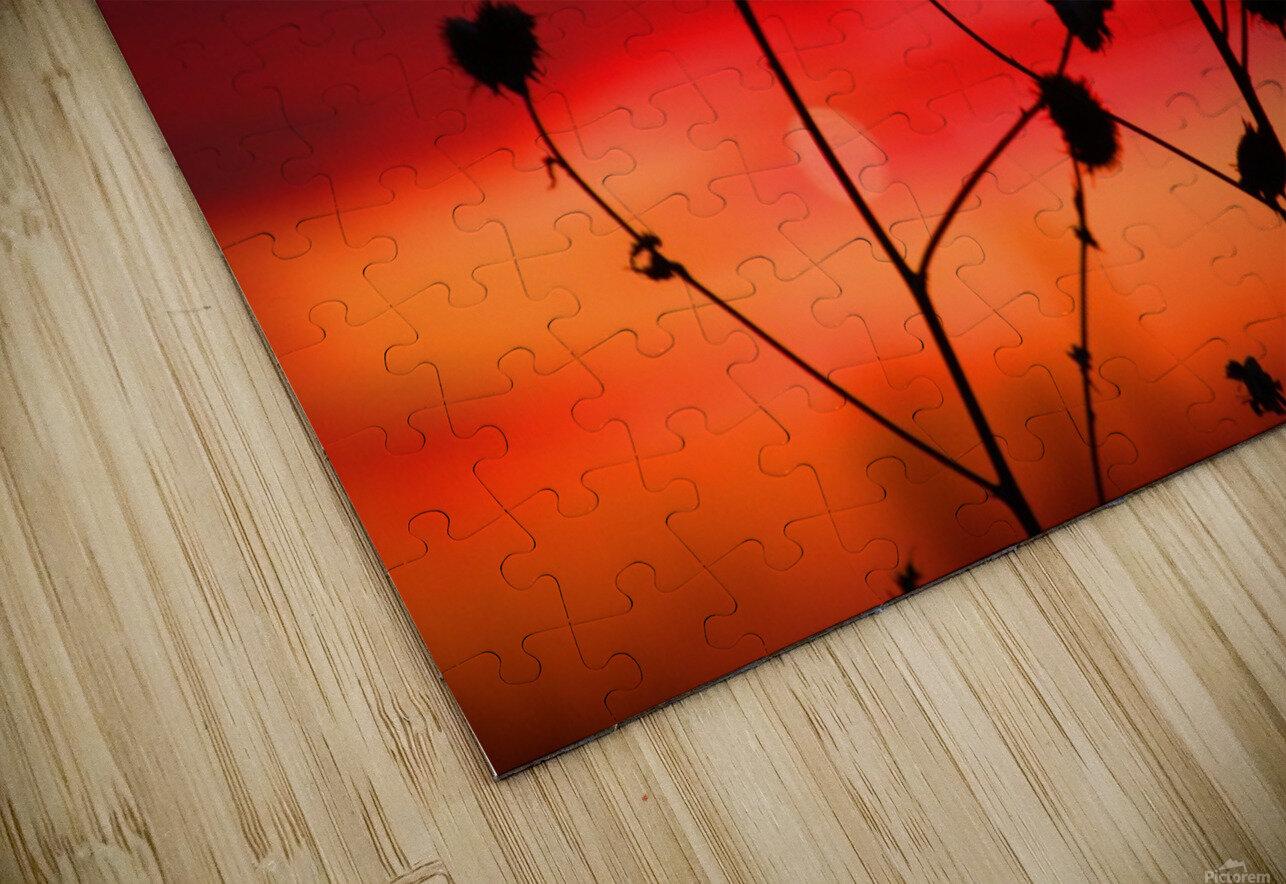 Liberty Sunset HD Sublimation Metal print