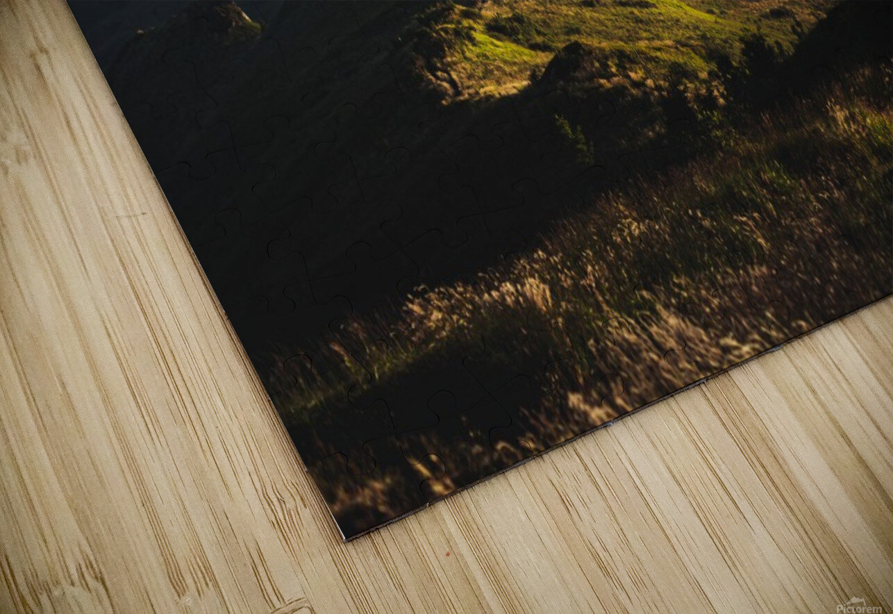 Morning trail HD Sublimation Metal print