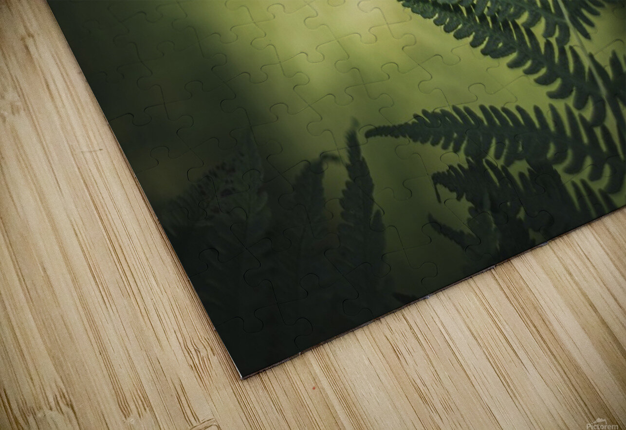 Green as the fern  HD Sublimation Metal print