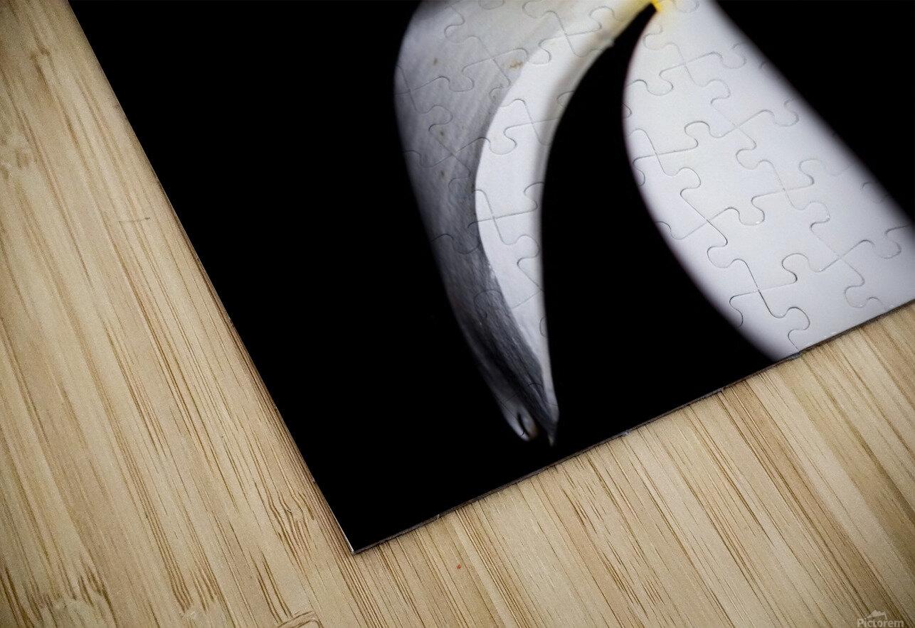 Simplicity HD Sublimation Metal print