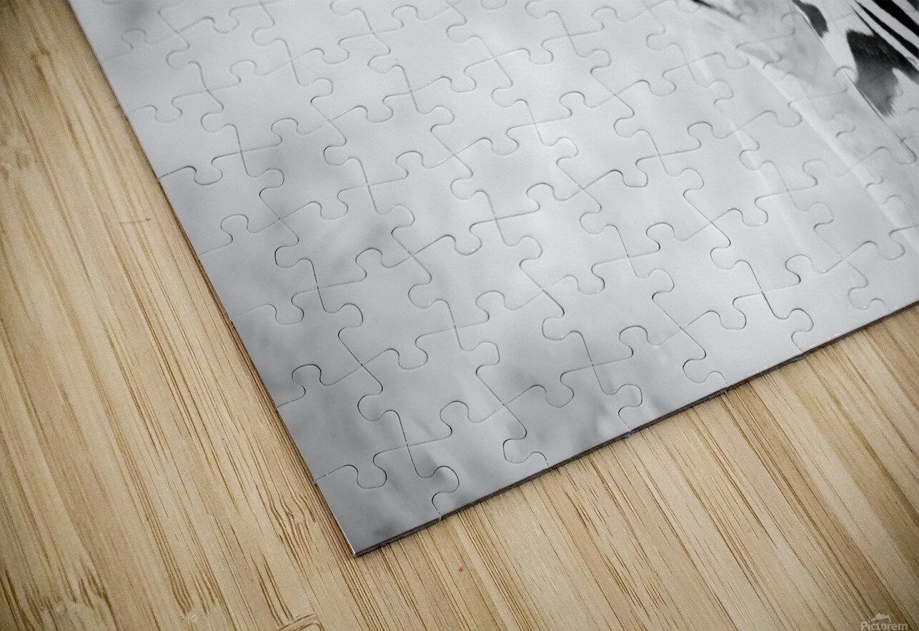 AdriaanPrinsloo 6718 HD Sublimation Metal print