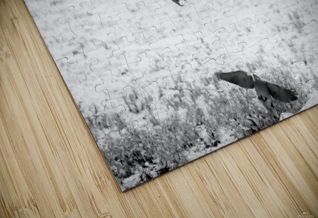 AdriaanPrinsloo 7140 HD Sublimation Metal print
