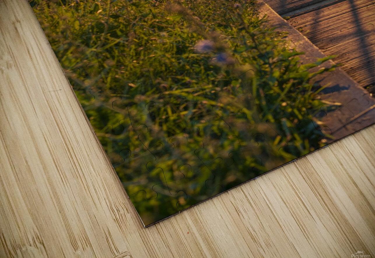 BridgeBoardwalk Impression de sublimation métal HD