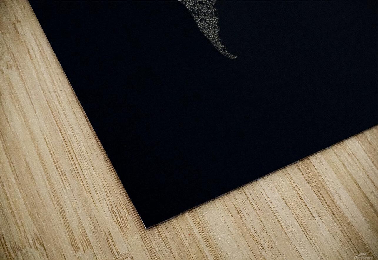 Dark Continent Ifren HD Sublimation Metal print