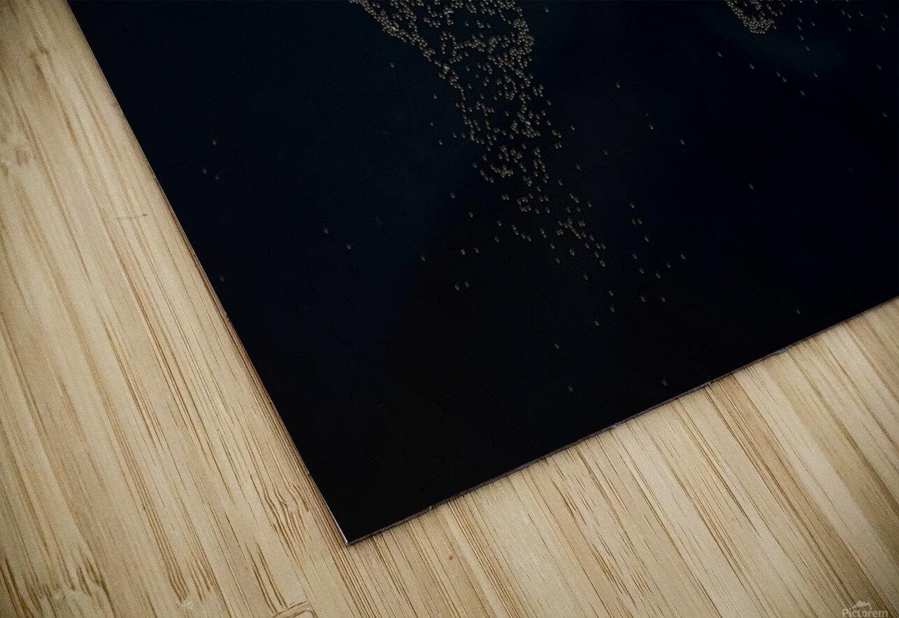 Dark Continent Milina HD Sublimation Metal print