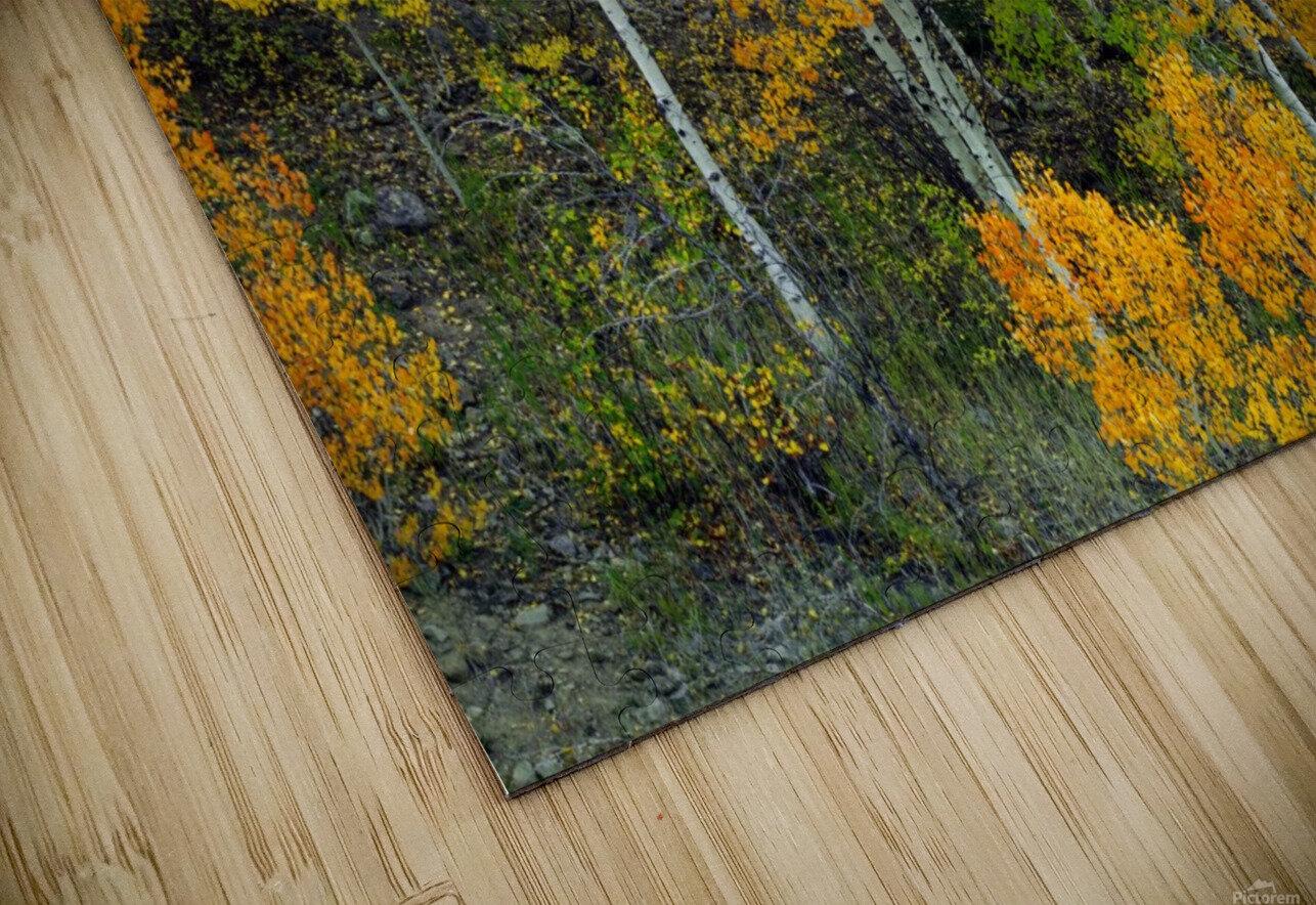 AUTUMN SERENITY  HD Sublimation Metal print
