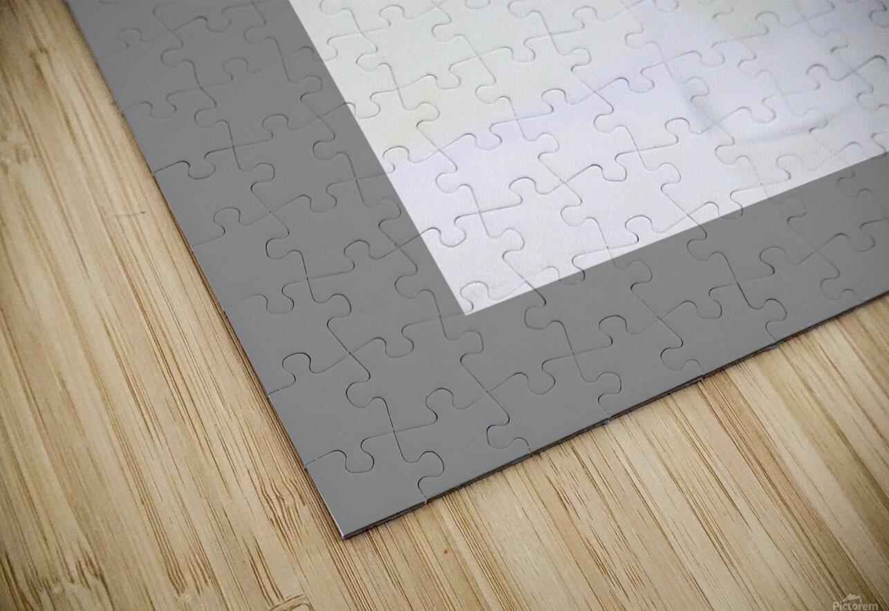 29 HD Sublimation Metal print
