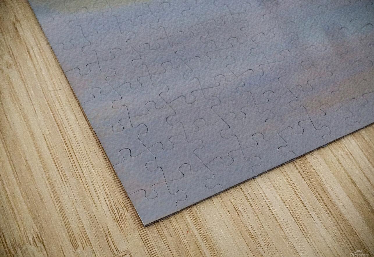 DSC_1012 HD Sublimation Metal print