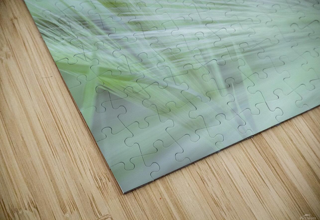 Wild grass Foxtail Barley HD Sublimation Metal print