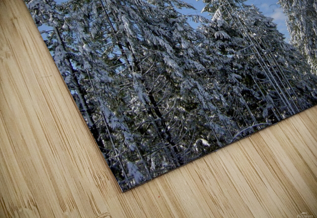 First Snow HD Sublimation Metal print